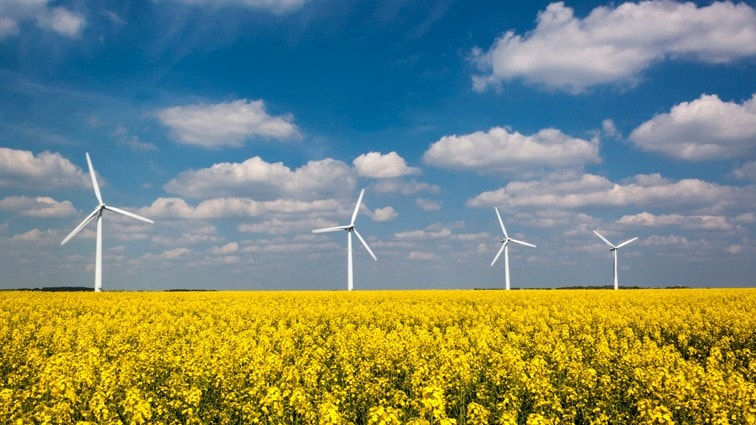 DSM to operate on 40% renewable electricity in the U.S. thanks to new wind power agreement with NextEra