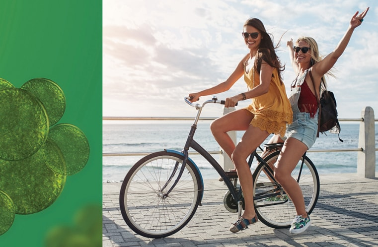Sunlight through kelp forest at Anacapa Island.
